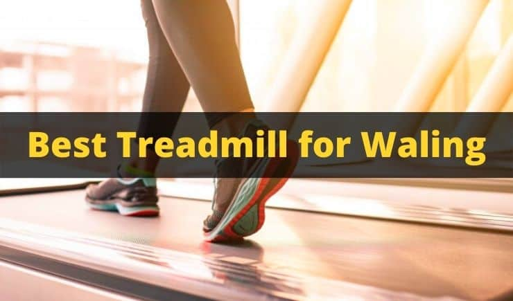 Best Treadmill for Walking in India